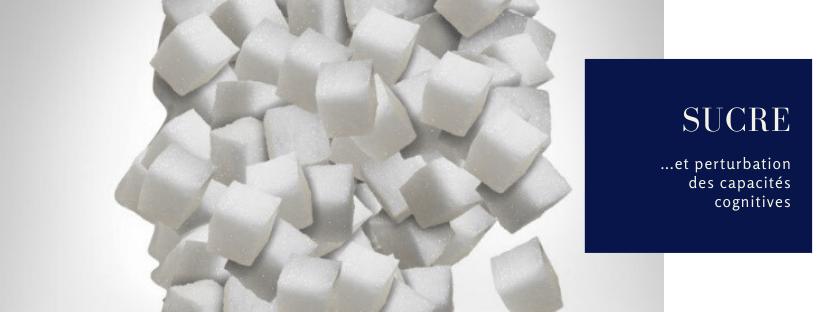 sucre cerveau